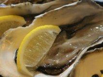 生牡蠣にアンガス牛のステーキ・牛かつも!15時から飲める池袋駅近の店