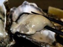 牡蠣好きにオススメしたい!良質な牡蠣がリーズナブルにいただけるお店