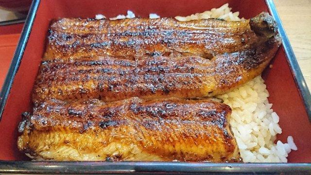 鎌倉帰りに是非食べたい!「うな重菊」が2500円と安くて美味しいお店