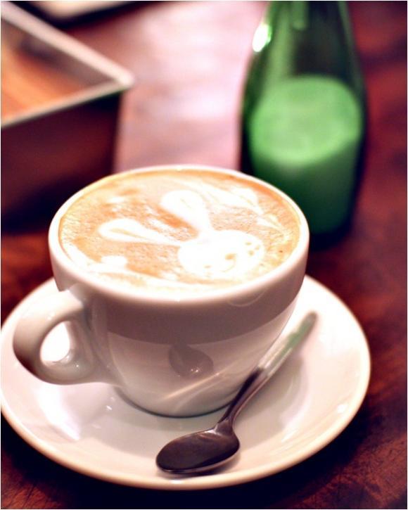 cafe WALL 新宿に輝くカフェの新星で最高の癒しを