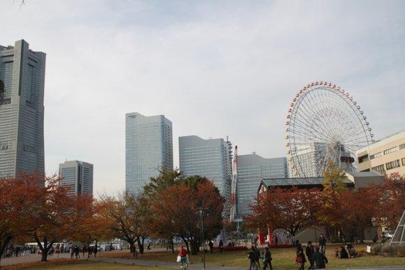デザートワゴン付が絶対お得!紅葉の美しい横浜で至福のランチ