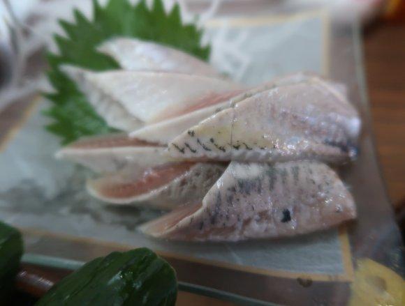 大ぶりで高レベルのモツや新鮮な魚貝料理が美味しい千葉の大衆酒場