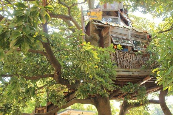 地図に載っていない?!横浜を眺められるツリーハウスカフェ
