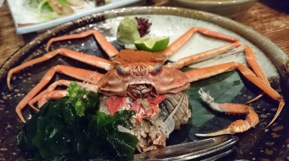 新鮮な北陸産鮮魚と秀逸な日本酒ラインナップを楽しむ!『魚旬 野毛店』