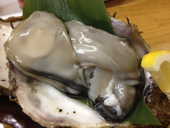牡蠣好き必見!旬の新鮮な海の幸が楽しめる魚専門の立ち呑み処