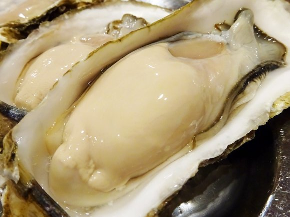 牡蠣に燻製・うどんすきまで!大阪のなんば・心斎橋界隈でオススメのお店