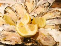 産直生牡蠣が8個1980円!新橋で牡蠣をお腹いっぱい食べられるお店