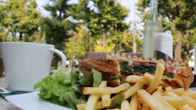 横浜・山下公園の紅葉散歩で立ち寄りたいテラスカフェ4選