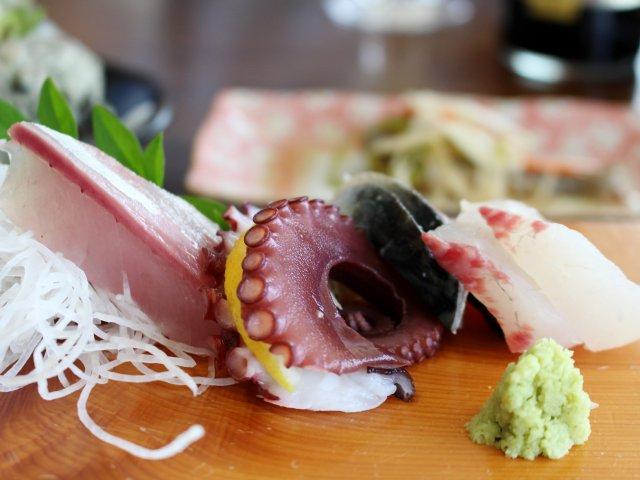 鮮度抜群!三浦半島・金田漁港のレストランは穴場中の穴場