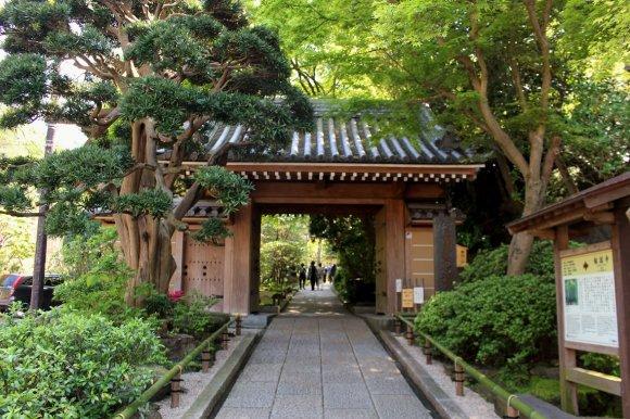 【鎌倉】お抹茶と竹の庭園に癒される報国寺「休耕庵」