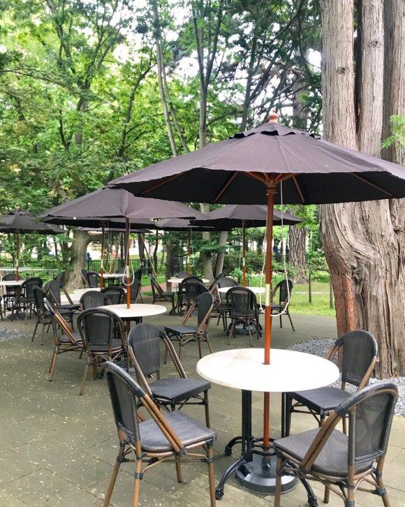 レトロ空間で楽しむプリンアラモード!懐かしさが新しい「和洋折衷喫茶」