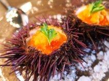 グルメな女性も満足必至!東京&神奈川のお得で美味な店6記事