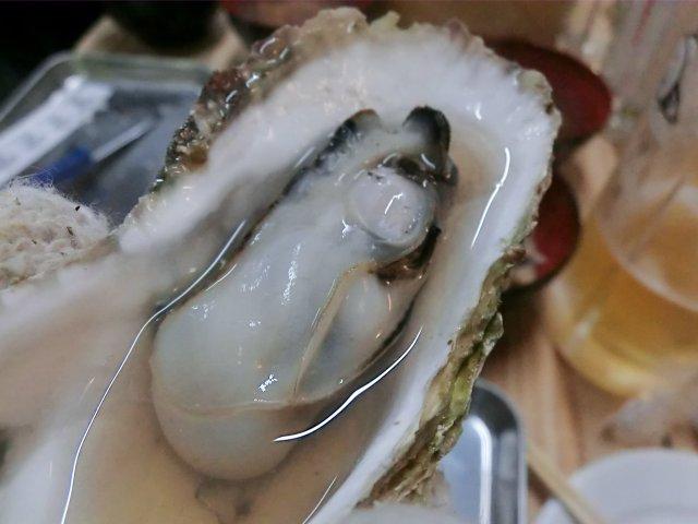 【蒲田】11/22新装OPEN!旬の九州産牡蠣が食べ放題