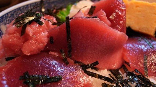 ツナの日到来!マグロがますます好きになる一押し鮪料理7記事