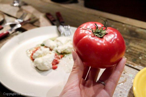 超デカ盛りサラダはインスタ映え抜群!旬の野菜でお腹一杯になれる人気店