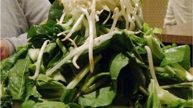 【大阪】衝撃の緑色!知る人ぞ知るヘルシー鍋『草鍋』を食す