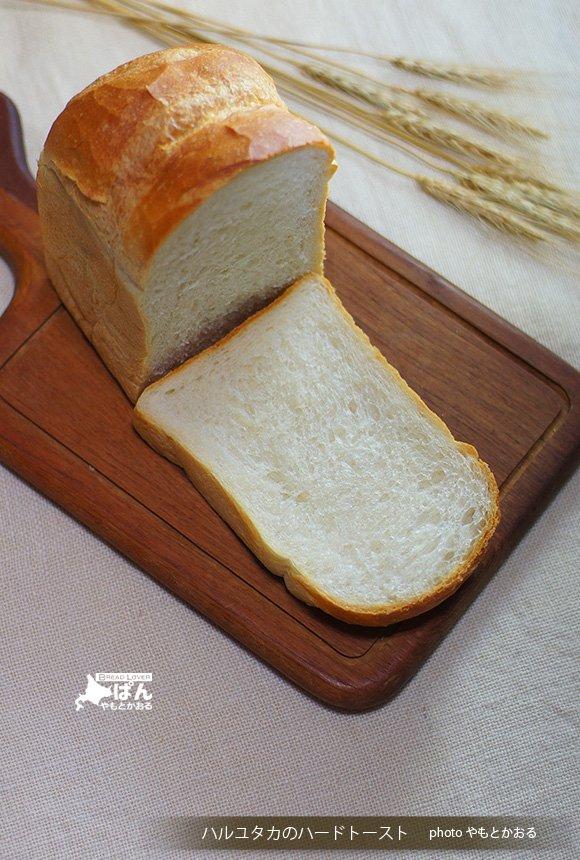 「幻」と呼ばれる稀少な小麦!ハルユタカの小麦畑を感じるハードトースト