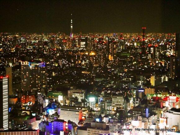 夜景も料理も楽しみたい!新宿で気軽に行ける手ごろなダイニングバー
