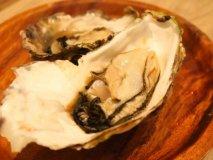 【11/19付】こだわりの生焼肉に魚介の食べ放題!週間人気ランキング